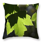 Summer Maple Leaves Throw Pillow