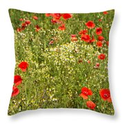 Summer Meadow Background Throw Pillow