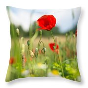 Summer Meadow With Red Poppy Throw Pillow