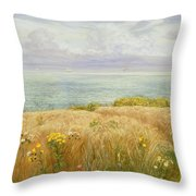 Summer On The Cliffs Throw Pillow