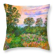 Summer Path At Rock Castle Gorge Throw Pillow