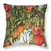 Summer Peaches Throw Pillow by Helen Klebesadel