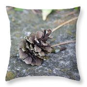 Summer Pinecone Throw Pillow