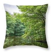 Summer Pool Cannock Chase Throw Pillow