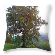 Summer Poplar Tree Filtered Throw Pillow