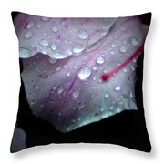 Summer Rain In Georgia Throw Pillow