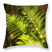 Summer Rain Throw Pillow by Jane Rix
