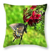 Summer Refreshment Throw Pillow