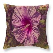 Summer Reward Throw Pillow