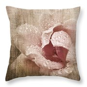 Summer Rose #1 Throw Pillow
