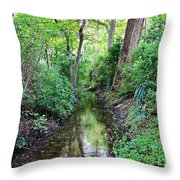 Summer Scene 1 Throw Pillow