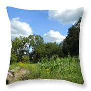 Summer Scenery Throw Pillow