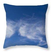Summer Sky Throw Pillow