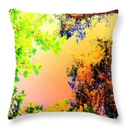 Looking Right Up Into The High Summer Sky Throw Pillow
