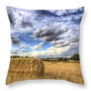 Summer Straw Bales Throw Pillow