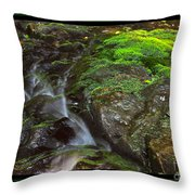 Summer Stream Waterfall Throw Pillow