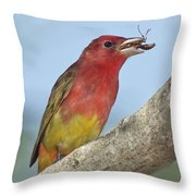 Summer Tanager Eating Wasp Throw Pillow