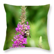 Summer Time And The Feeding Is Easy Throw Pillow