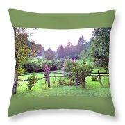 Summer Valley Fence Throw Pillow