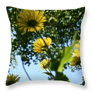 Summer Viewpoint Throw Pillow