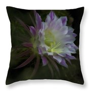 Summer Whispers  Throw Pillow