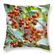 Summer Wild Berries Throw Pillow