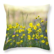 Summer Wildflowers On The Rim  Throw Pillow
