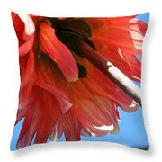 Summer's End Dahlia Throw Pillow