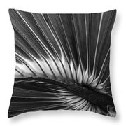 Summers Fan Throw Pillow