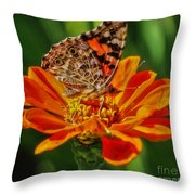 Summers Last Butterfly Throw Pillow