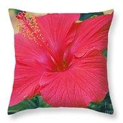Summer's Last Hibiscus Throw Pillow