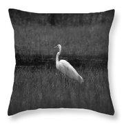 Summer's Night Egret Throw Pillow