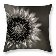 Summer's Promise Throw Pillow