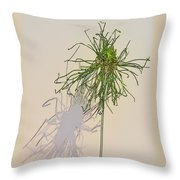 Summers Shadow Throw Pillow