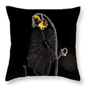 Summers Web Before Sunrise Throw Pillow