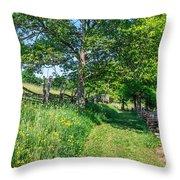 Summertime At The Farm Throw Pillow