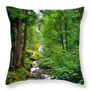 Summertime In The Cascades Throw Pillow