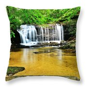 Summertime Refreshment Throw Pillow