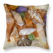 Summertime Relics Throw Pillow