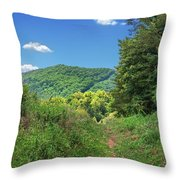 Summertime Trail At The Gap Throw Pillow