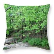 Summertime Walnut Creek Throw Pillow