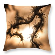 Sun And Frost Throw Pillow