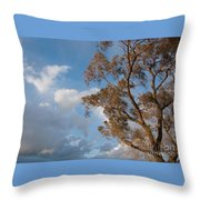 Sun And Wind Throw Pillow