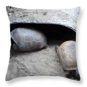 Sun Basking Turtles Throw Pillow