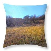 Sun Beam Hills Throw Pillow