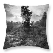 Sun Behind The Tree Throw Pillow