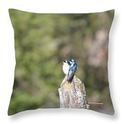 Sun Break Throw Pillow