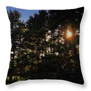 Sun Burst Through The Trees Throw Pillow