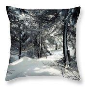 Sun Dappled Snow Throw Pillow