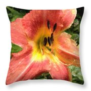 Sun Day Lilly  Throw Pillow